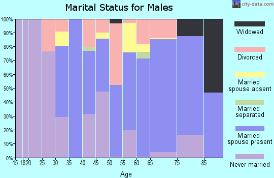 Zip code 04037 marital status for males
