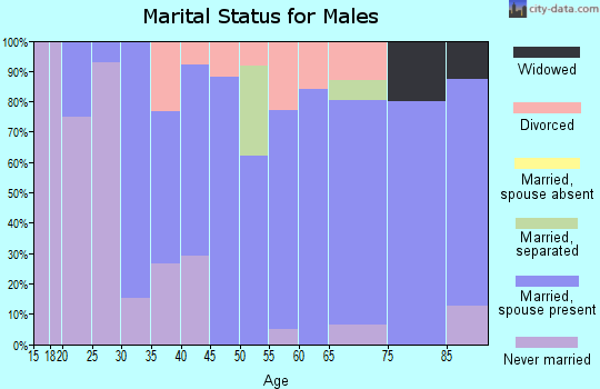 Zip code 04095 marital status for males