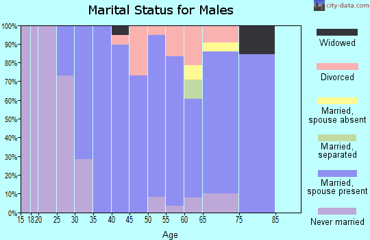 Zip code 04097 marital status for males