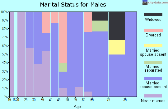 Zip code 04256 marital status for males