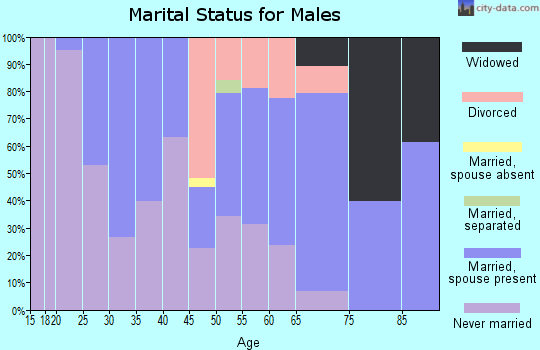 Zip code 04276 marital status for males