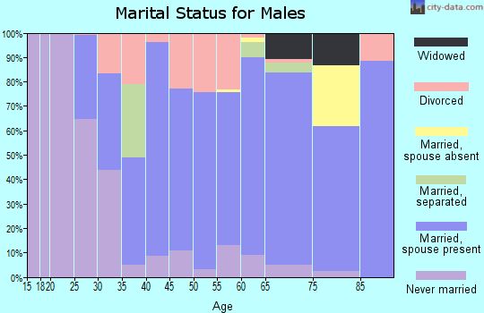 Zip code 04280 marital status for males