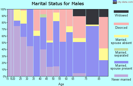 Zip code 04289 marital status for males