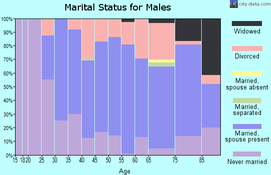 Zip code 04345 marital status for males