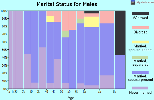 Zip code 04349 marital status for males