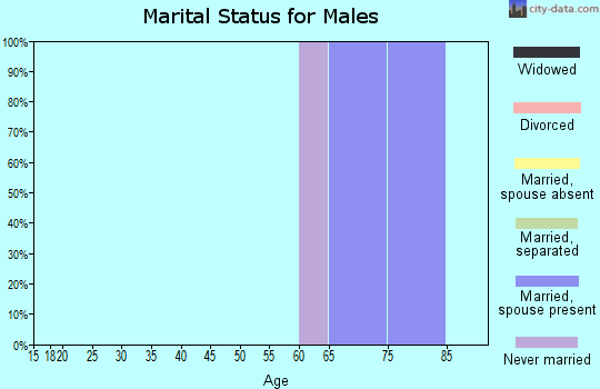Zip code 04442 marital status for males