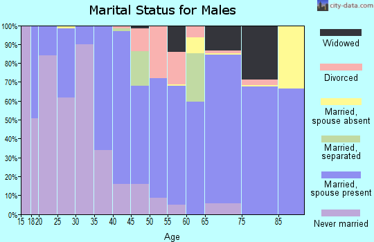 Zip code 04457 marital status for males