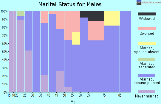Zip code 04496 marital status for males