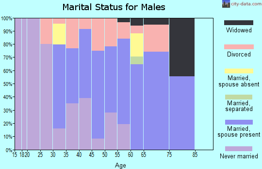 Zip code 04667 marital status for males