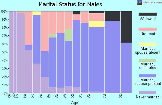 Zip code 04694 marital status for males