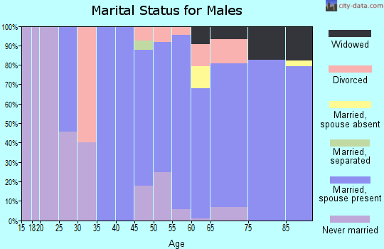 Zip code 04856 marital status for males