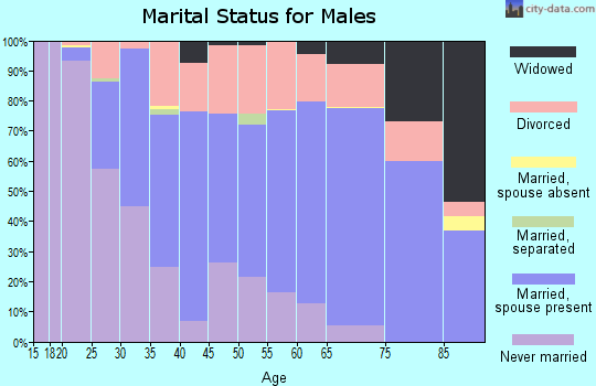 Zip code 04901 marital status for males