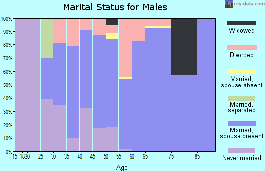 Zip code 04957 marital status for males