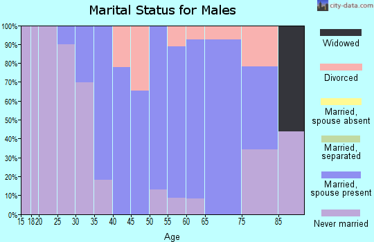 Zip code 05055 marital status for males
