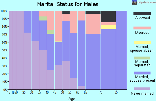 Zip code 05101 marital status for males