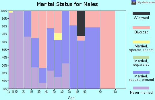 Zip code 05456 marital status for males