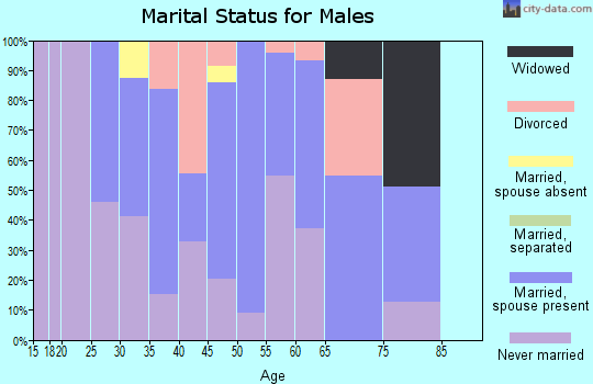 Zip code 05843 marital status for males