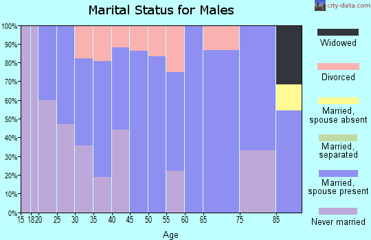 Zip code 05845 marital status for males
