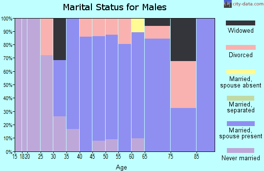 Zip code 06063 marital status for males