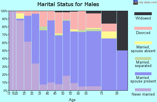Zip code 06076 marital status for males