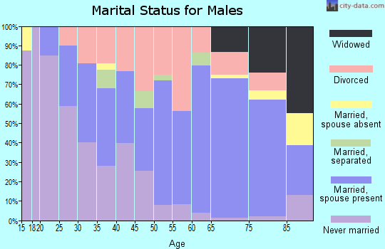 Zip code 06260 marital status for males