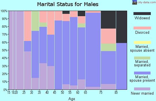 Zip code 06365 marital status for males
