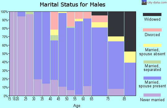 Zip code 06374 marital status for males