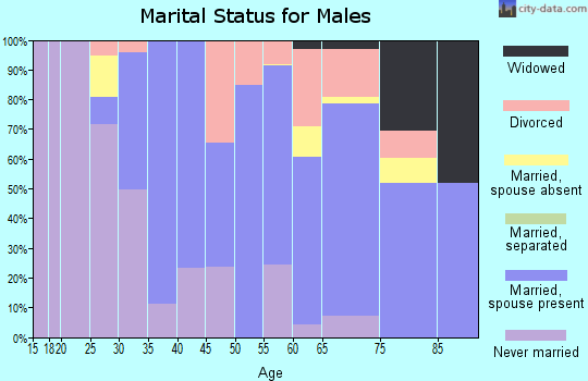 Zip code 06378 marital status for males
