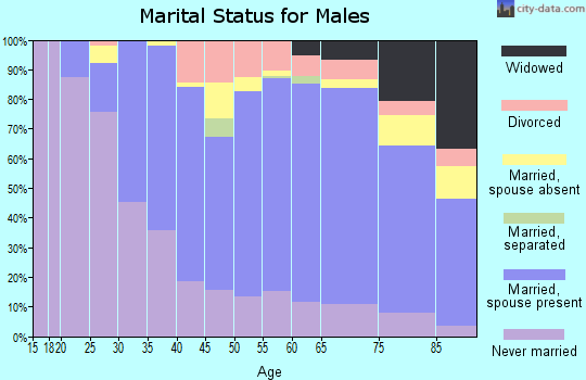 Zip code 06851 marital status for males