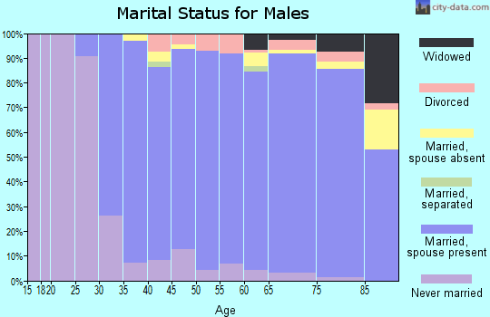 Zip code 07090 marital status for males