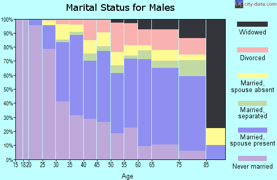 Zip code 07306 marital status for males