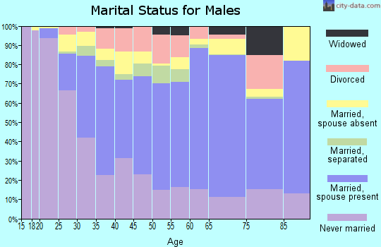 Zip code 07307 marital status for males