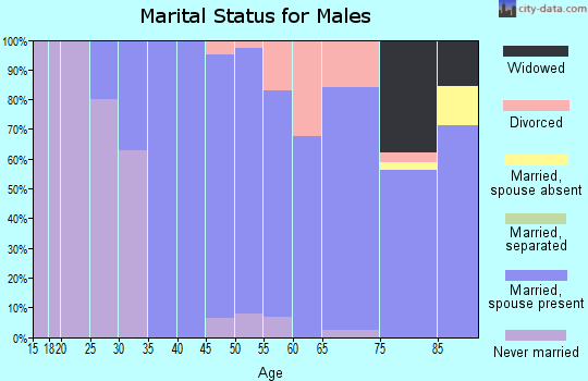 Zip code 07401 marital status for males