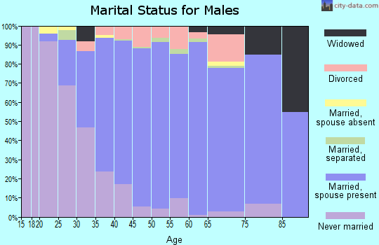 Zip code 07461 marital status for males