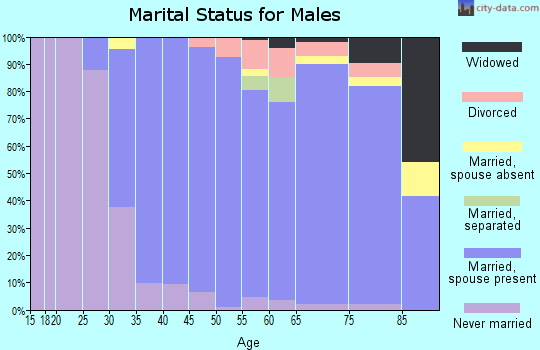 Zip code 07481 marital status for males