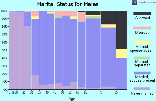 Zip code 07675 marital status for males