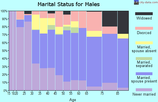 Zip code 07801 marital status for males