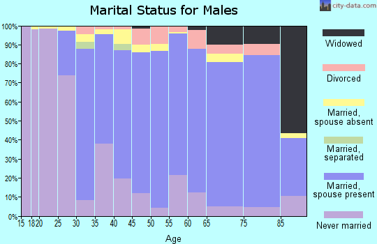 Zip code 07940 marital status for males