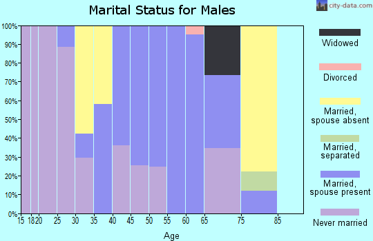 Zip code 07980 marital status for males