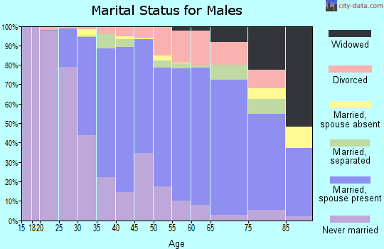 Zip code 08016 marital status for males