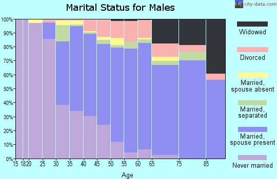 Zip code 08046 marital status for males