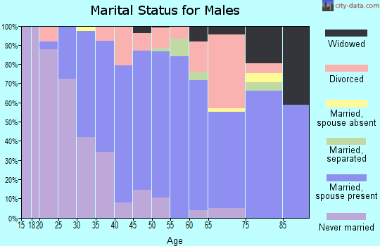 Zip code 08048 marital status for males