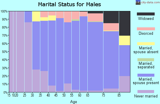 Zip code 08055 marital status for males