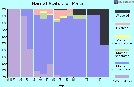 Zip code 08062 marital status for males