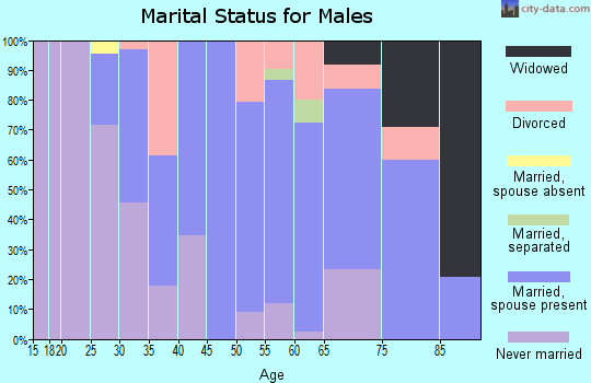 Zip code 08063 marital status for males