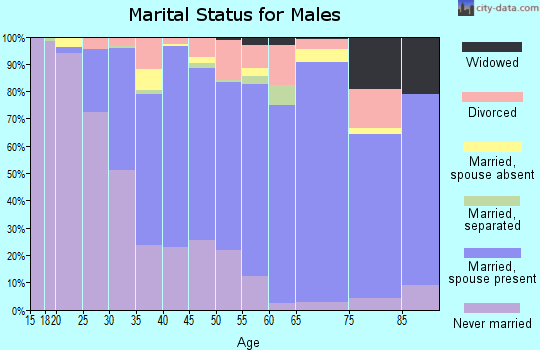 Zip code 08075 marital status for males