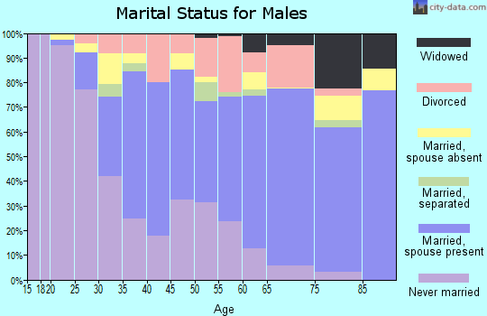 Zip code 08079 marital status for males