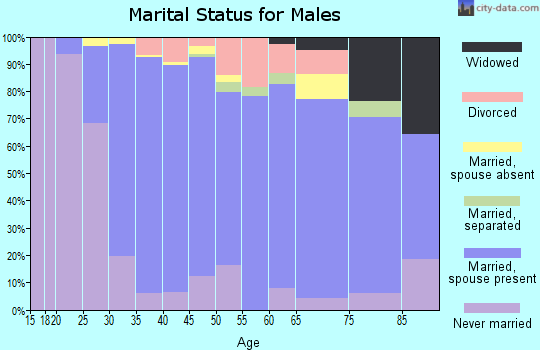 Zip code 08085 marital status for males