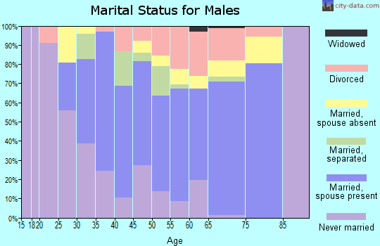 Zip code 08089 marital status for males