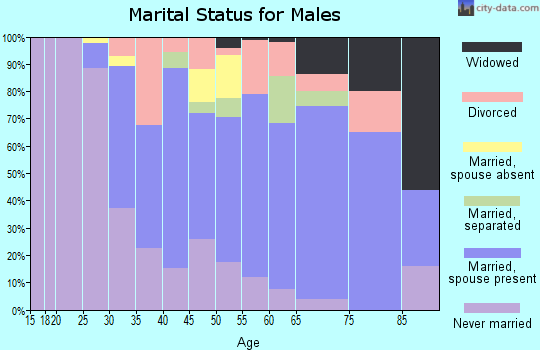 Zip code 08093 marital status for males